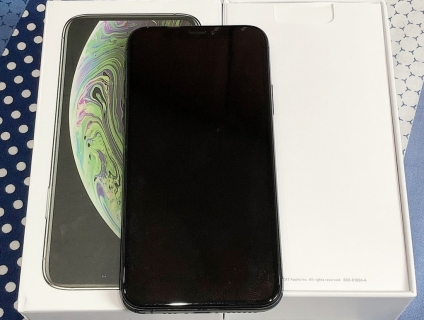 Iphone XS 256gb gray qtế fullbox .