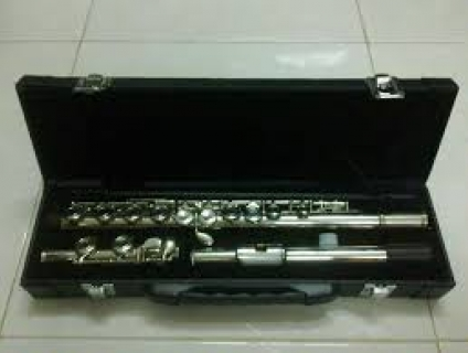 BÁN RẺ Flute DELIGHTED MỚI 98%